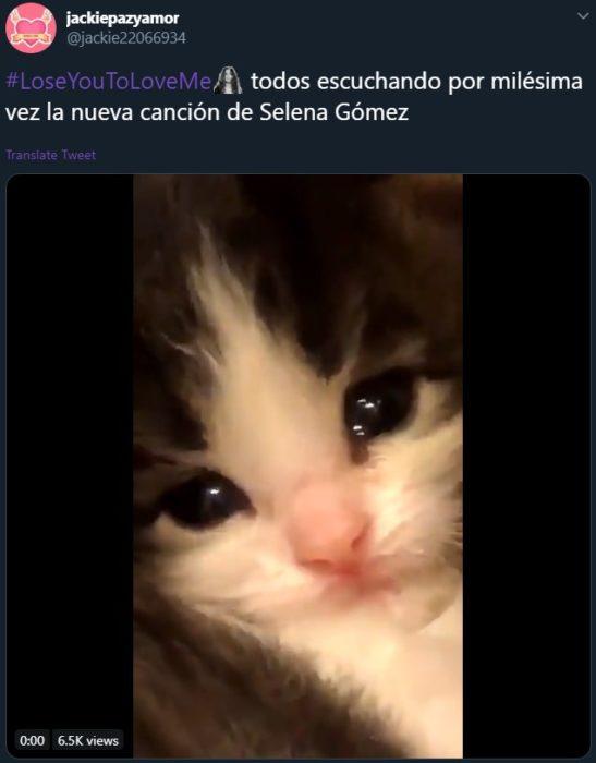 Lose you to love me de Selena Gomez para Justin Bieber se vuelve viral; meme de gato llorando
