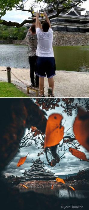 Truco para que puedas tomar fotografías con hojas