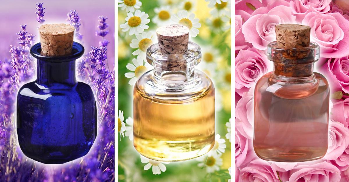 10 aceites que debes probar para complementar tu rutina de belleza