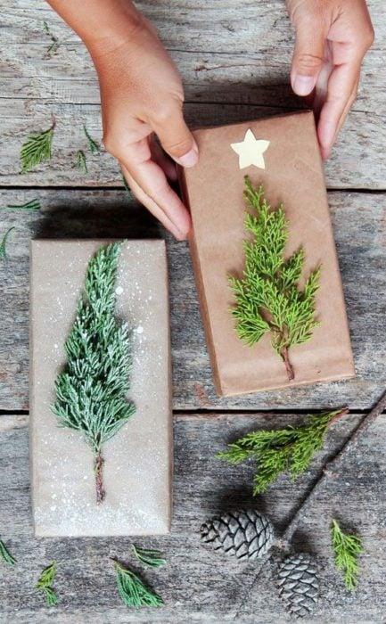Caja envuelta con papel revolución y un pequeño pino de decoración
