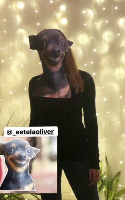 Chica celebra fiesta de cumpleaños con temática de memes y stickers; perro chihuahueño