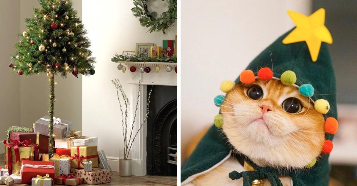 ¡Problema resuelto! Lanzan pino navideño a la mitad para que tus gatos no lo destruyan