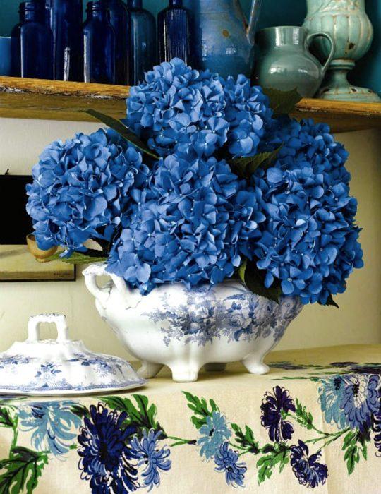 Pantone elije el classic blue como el color del 2020; flores azul clásico, hortensias en florero, azucarero