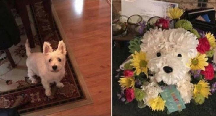 Foto de perrito y arreglo de flores en forma de perrito