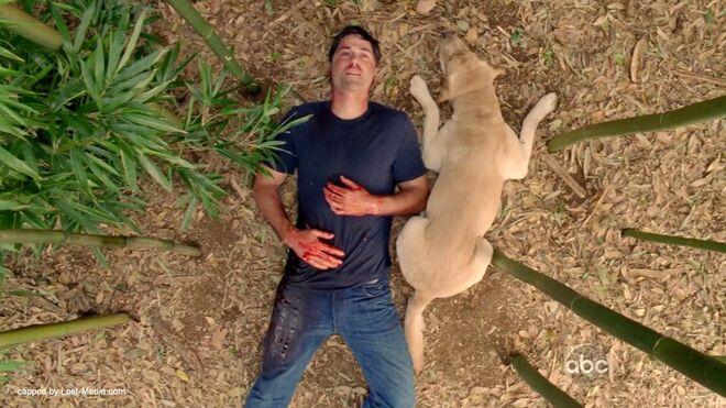 Jack Shepard de Lost recostada en el suelo de la isla, serie Lost