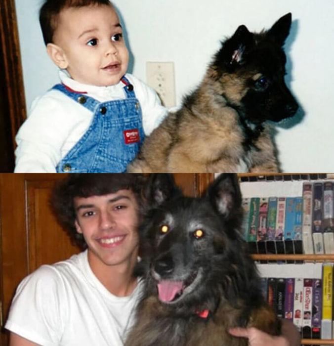 Antes y después de humanos con sus mascotas; niño y perro pastor alemán