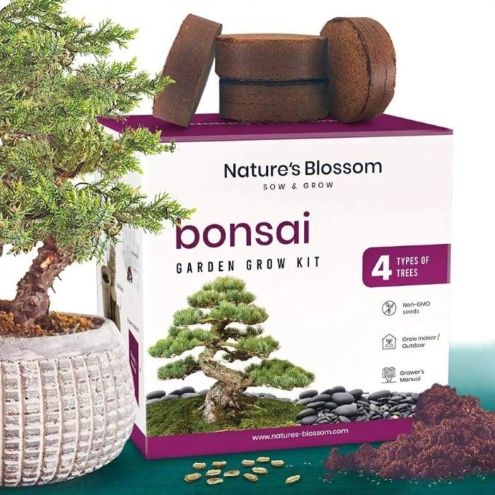 Kit para cualtivar 4 tipos de bonsai diferentes