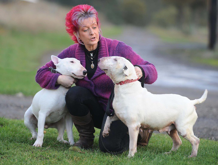 Liz con dos de los bulldogs del refugio