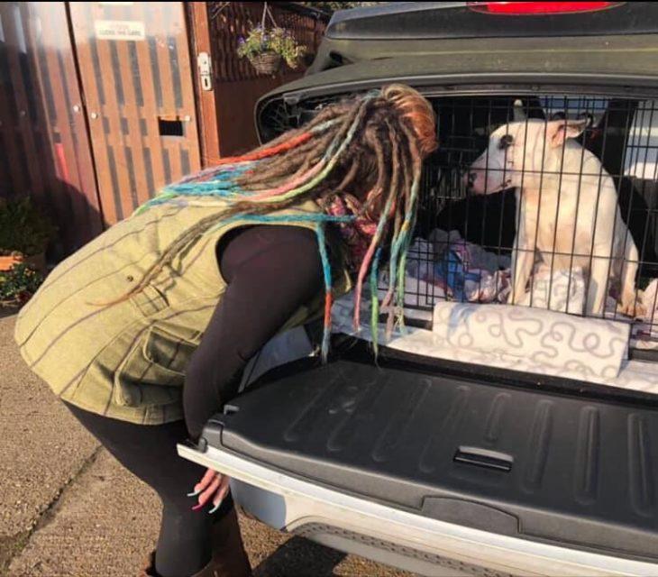 Liz llevando a un nuevo integrandte al refugio de BedForBullies