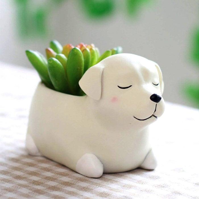 Macetas tiernas y originales de animales; perro blanco
