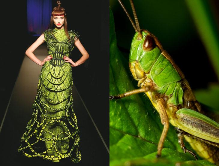 Vestidos inspirados en la naturaleza; saltamones, vestido verde