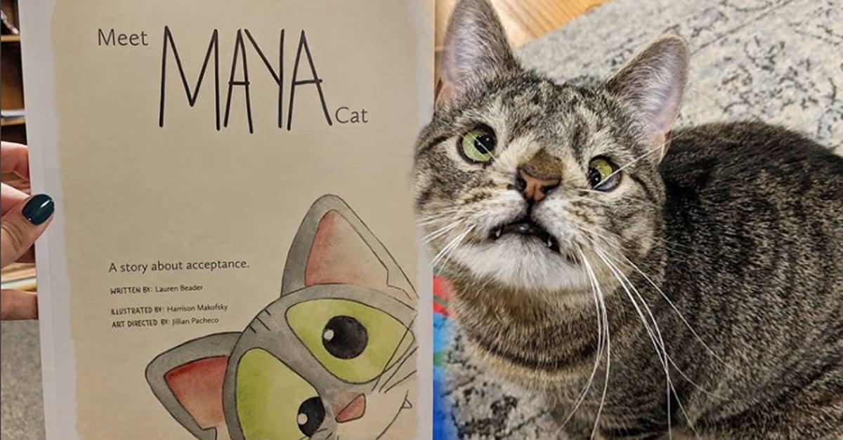 Maya, la gatita con Síndrome de Down tiene su propio libro