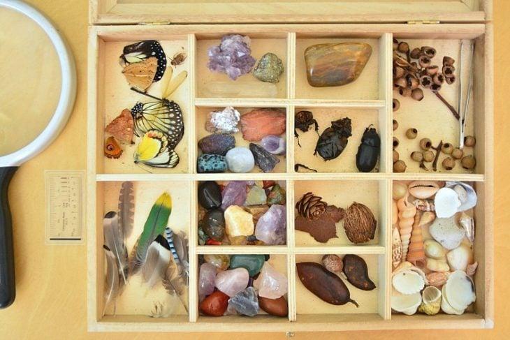Caja de clasificación, juguete educativo Montessori