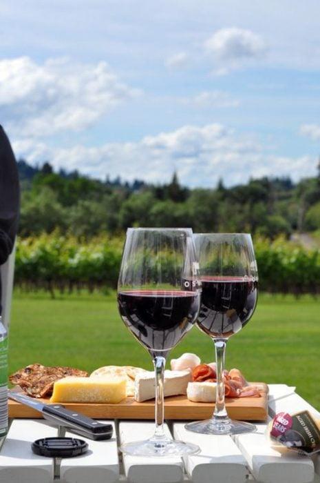 Copas de vino junto con tabla de quesos y de fondo un paisaje a campo abierto