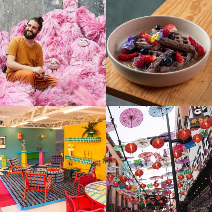 Cursos de Domestika gratis y en línea para la cuarentena; blogging