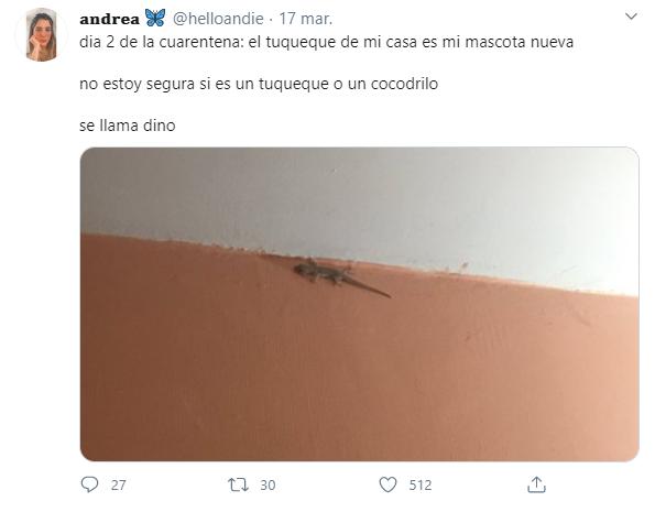 Tweets de mascotas acompañando a su dueño en la cuarentena