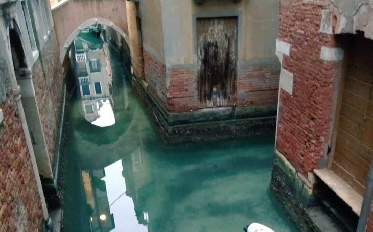 Canales de venecia descontaminados por la ausencia de turistas