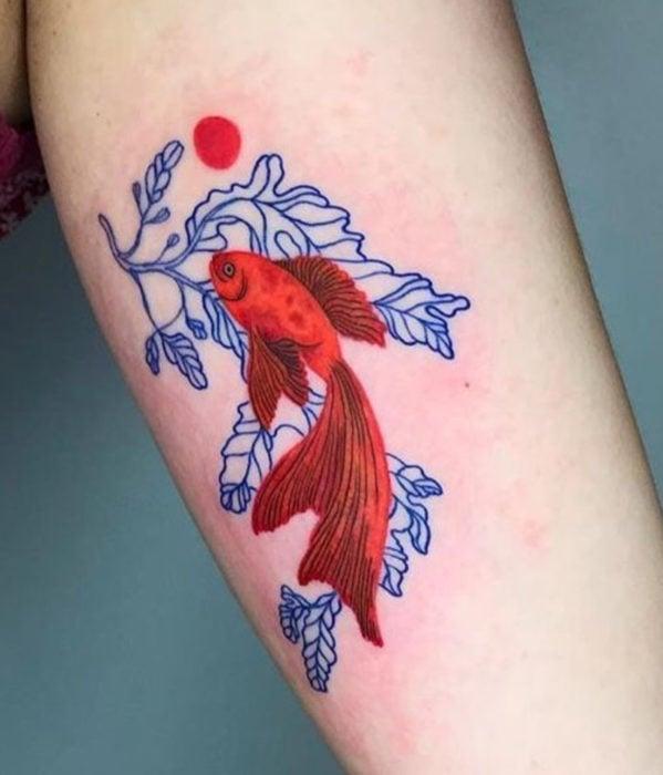 Tatuajes femeninos y con significado; pez beta rojo con plantas azules, en el brazo