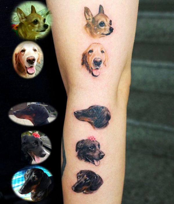 Tatuajes femeninos y con significado; retratos realistas de perros en el brazo