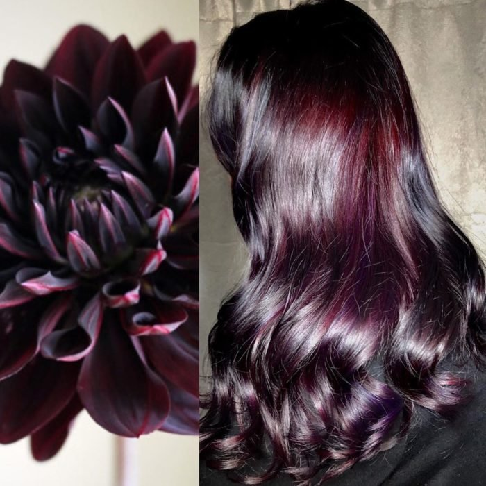 Ursula Goff, estilista crea tintes basados en naturaleza y obras de arte; dalia morada con negro cabello largo, ondulado color vino oscuro