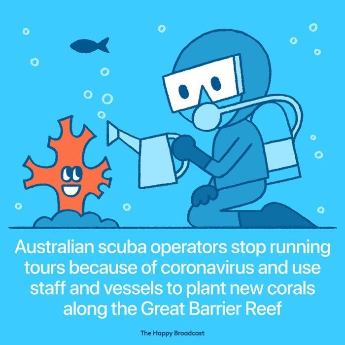 Ilustración de noticia positiva sobre los corales