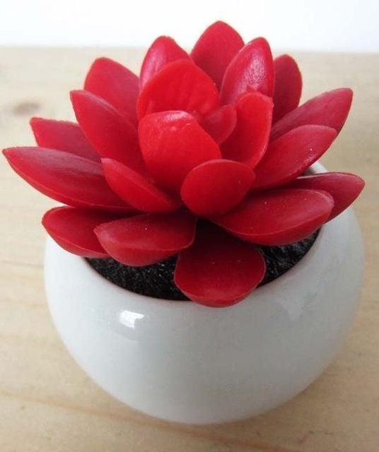 Suculenta de petalos rojos en maceta blanca de ceramica