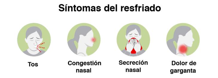 Infografía con síntomas del resfriado