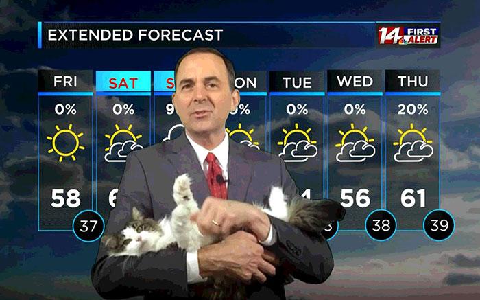 Jeff Lyons meteorologo cargando a un gato en brazos