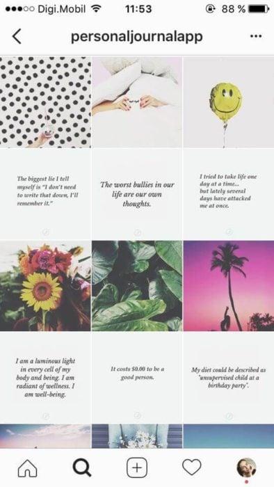 Feed de Instagram con diseño horizontal