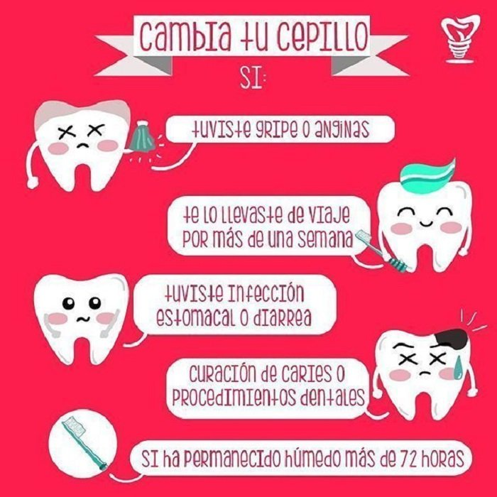 Infografía sobre el cepillo dental