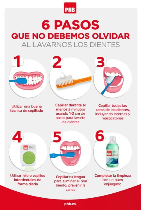 Infografía sobre como se deben de lavar los dientes