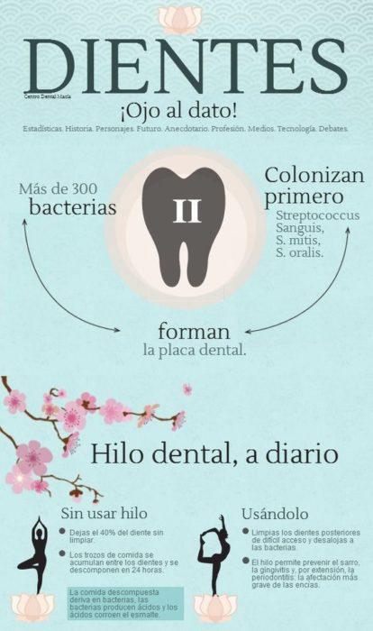 Infografía sobre el hilo dental