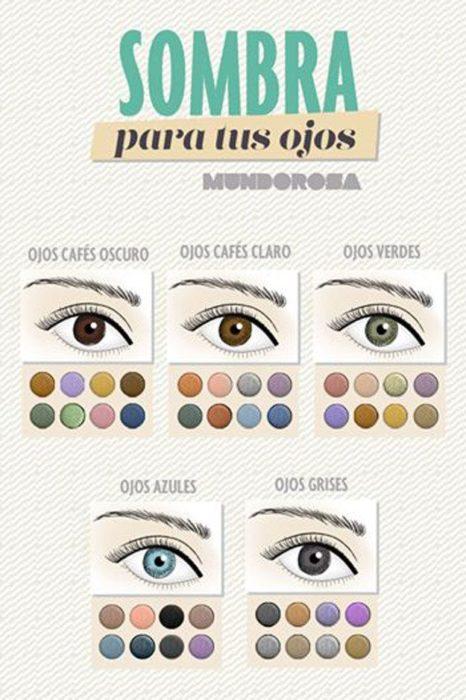 Infografía sobre el crecimiento de las pestañas las sombras de ojos