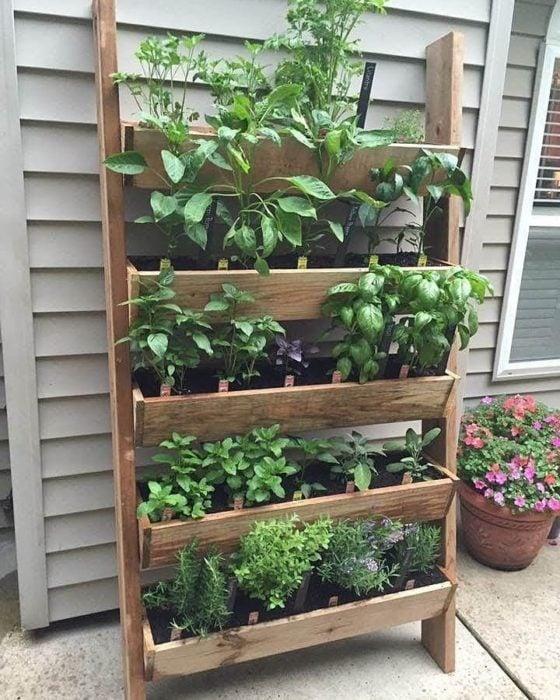 Jardín vertical hecho con pallets