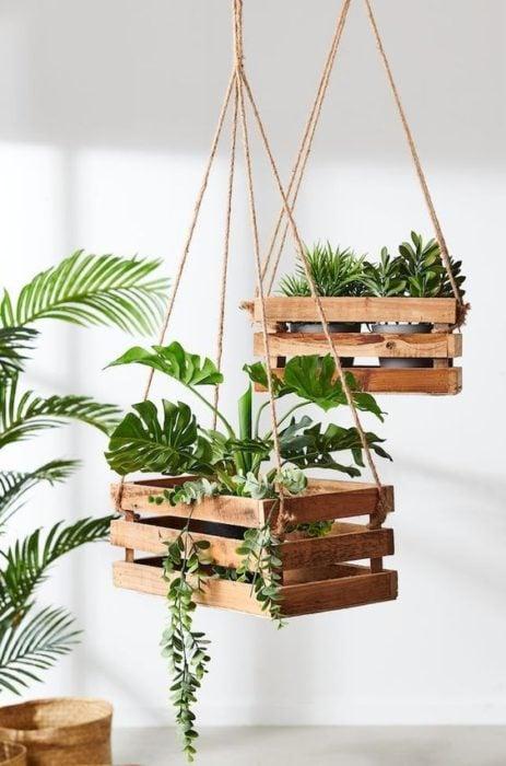Cajas de madera colgantes con plantas en su interior