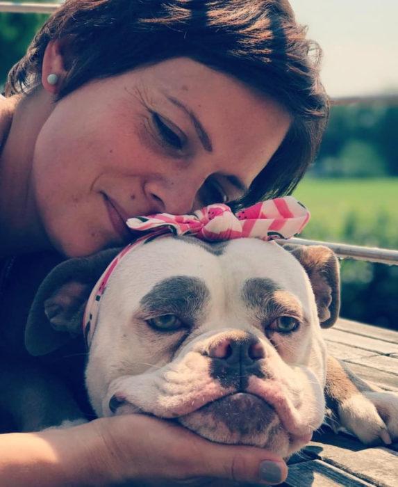 Madame Eyebrows, la perrita bulldog con cejas que la hacen parecer triste; perra con moño