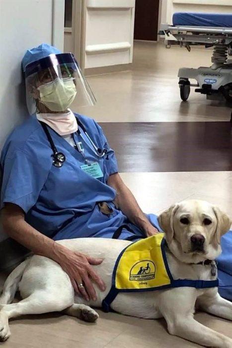 Doctor recostado en el piso junto a Wynn perrita de asistencia en lucha contra el Covid-19