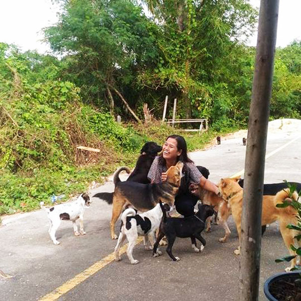 Mujer rodeada de perros callejeros