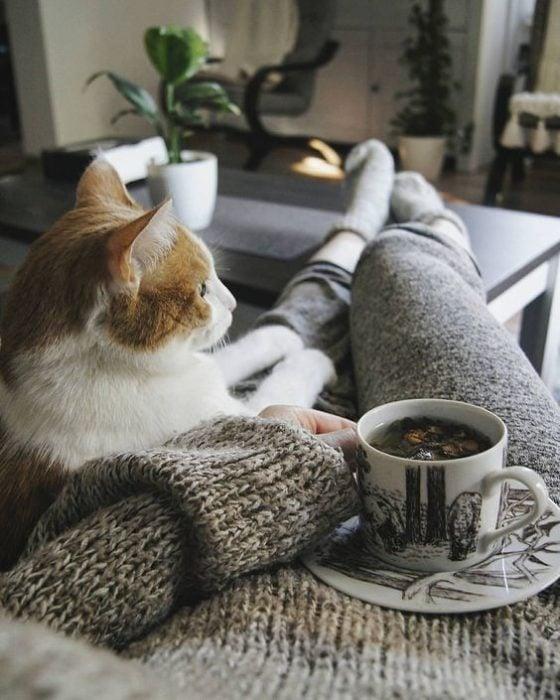 Chica tomando un té con su gato