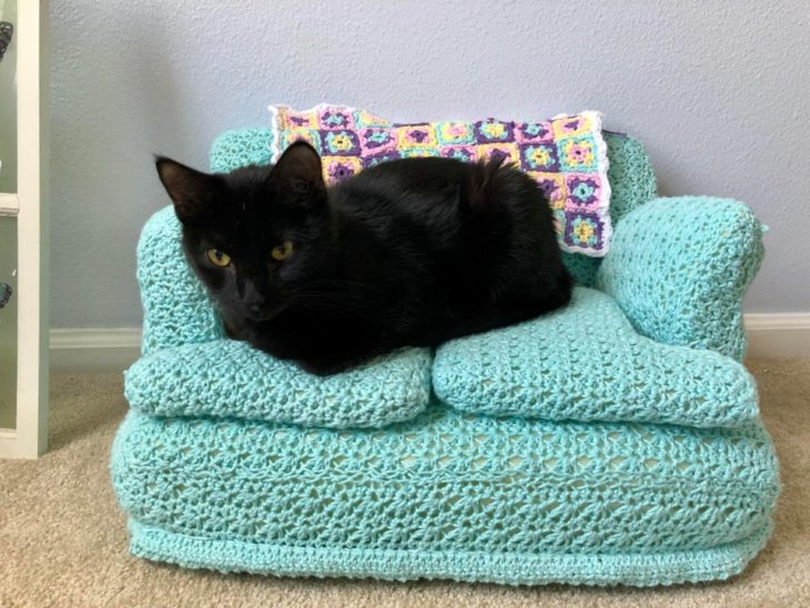 Gato negro acostado en sillón azul