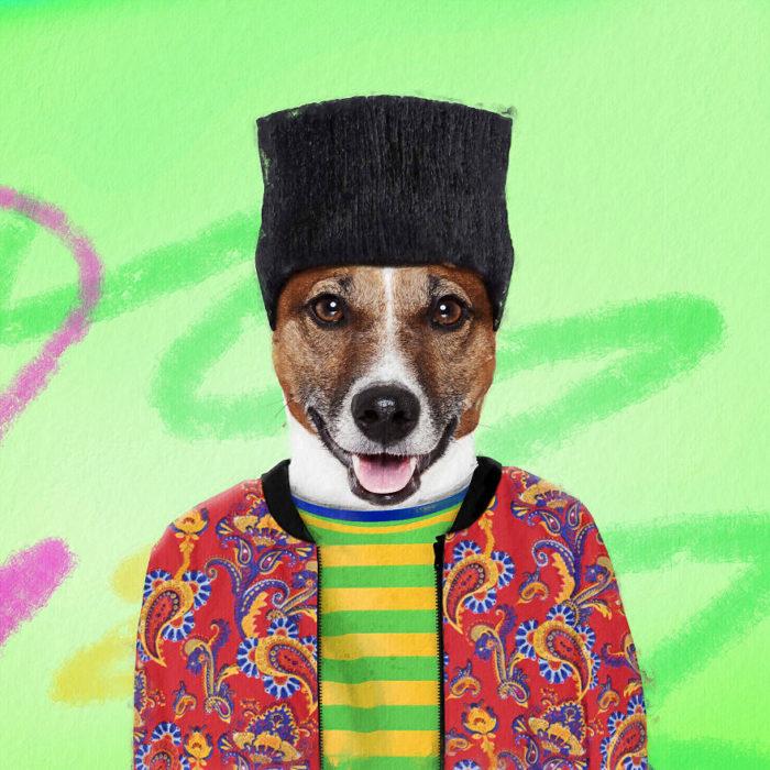 Perro disfrazado como El príncipe del rap