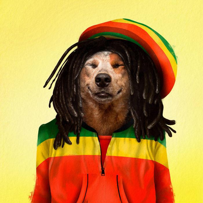 Perro disfrazado como Bob Marley