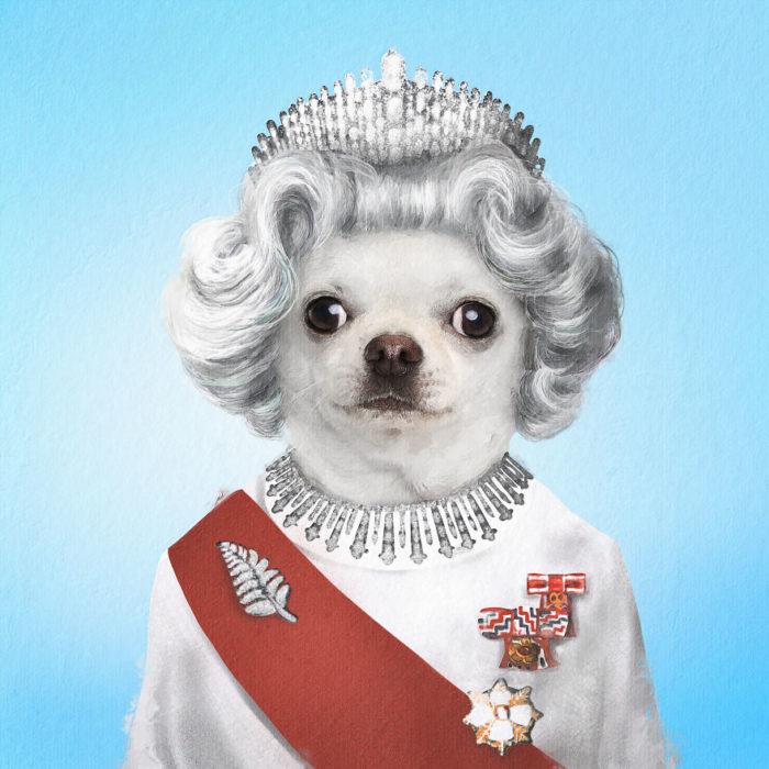 Perrito disfrazado como La reina Isabel II