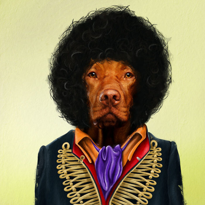 Perro disfrazado como Jimi Hendrix