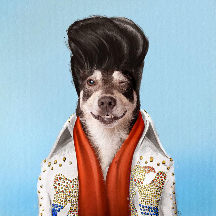 Perro de raza pequeña vestido como Elvis Presley
