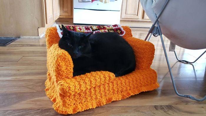 Gato negro acostado en mini sillón anaranjado