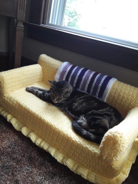Gato rayado acostado en sillón pequeño amarillo