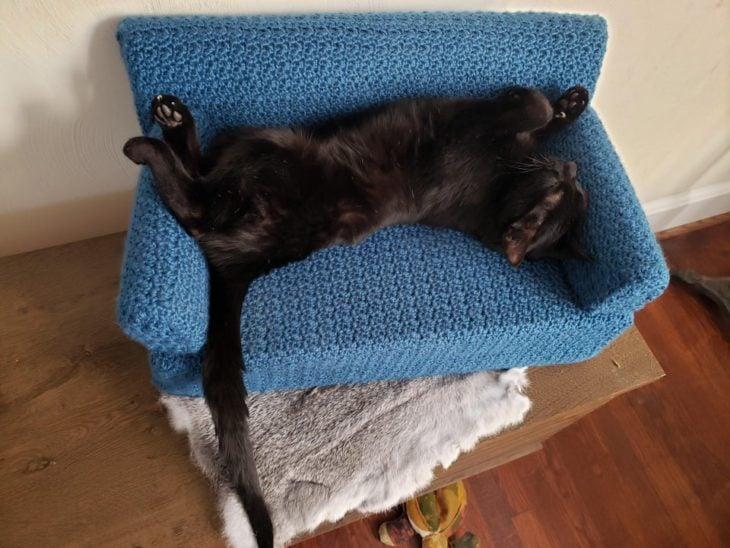 Gato negro acostado en mini sillón azul