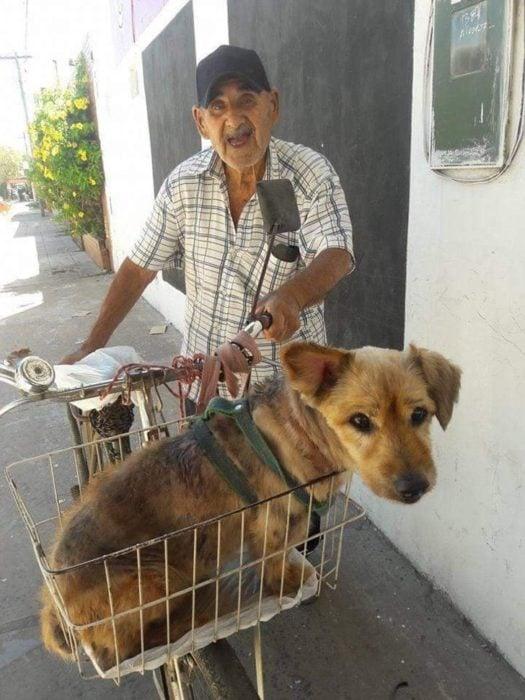 Hombre transportando a su perrito en una canastilla de su bicicleta