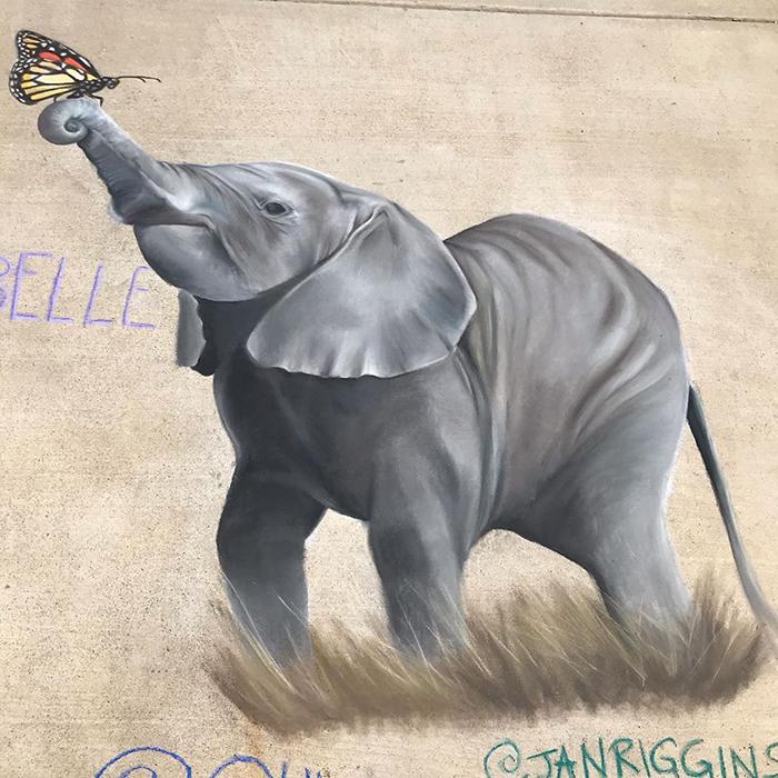 Elefante dibujado con tiza